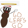 LeafsAndFlames