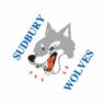 WolvesAndWings